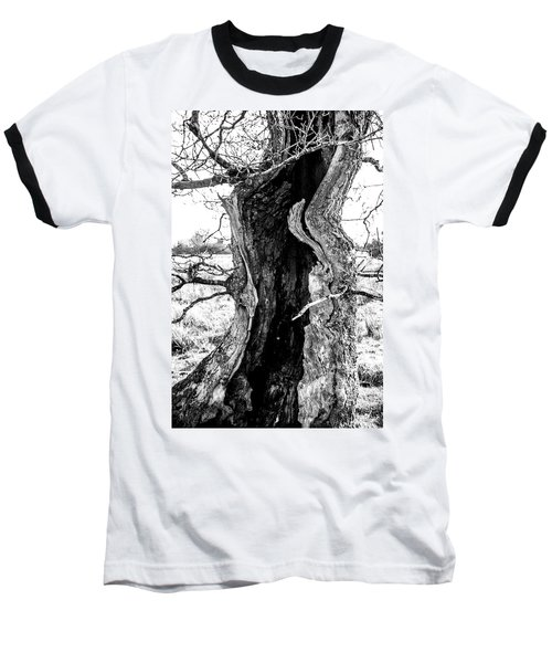 Lightning Tree Baseball T-Shirt