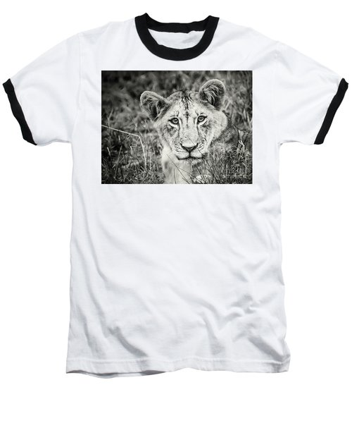 Lioness Portrait Baseball T-Shirt