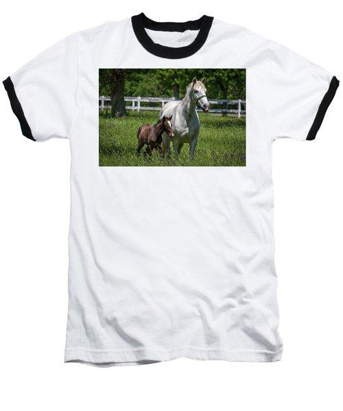Lipizzan Horses Baseball T-Shirt
