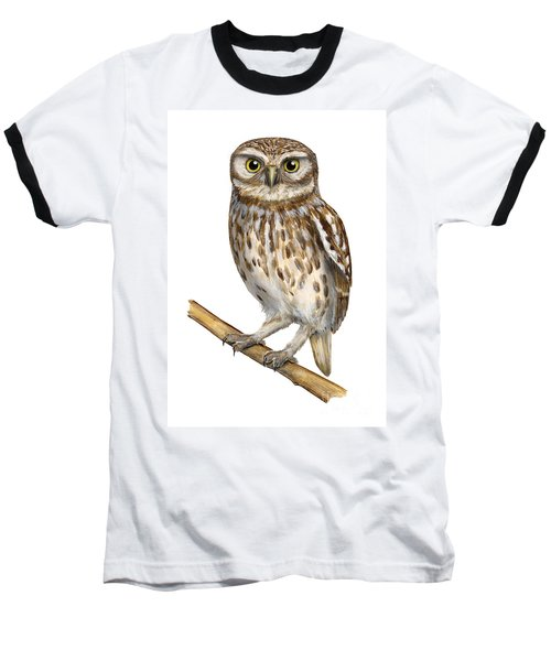 Little Owl Or Minerva's Owl Athene Noctua - Goddess Of Wisdom- Chouette Cheveche- Nationalpark Eifel Baseball T-Shirt