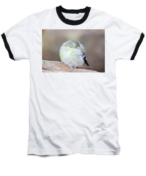 Little Sleeping Goldfinch Baseball T-Shirt