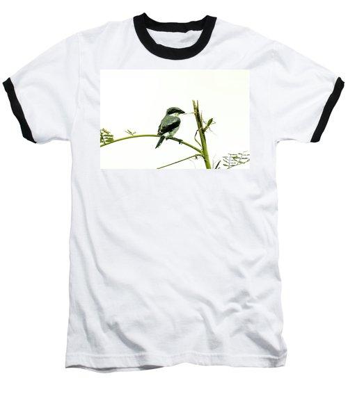 Loggerhead Shrike And Mantis Baseball T-Shirt by Robert Frederick