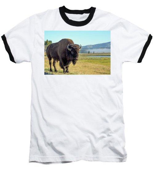 Lonely  Baseball T-Shirt