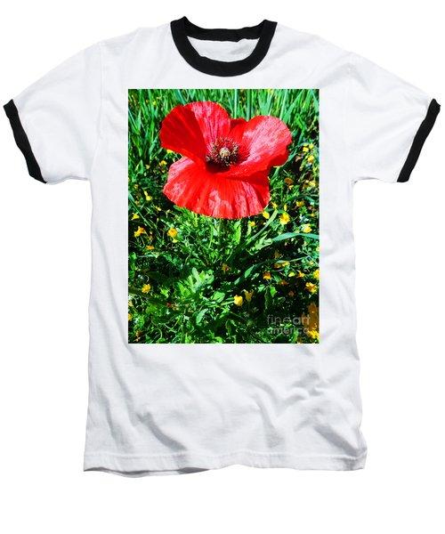 Lonely Poppy Baseball T-Shirt by Don Pedro De Gracia