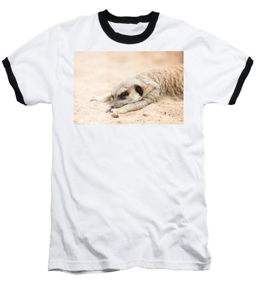Long Day In Meerkat Village Baseball T-Shirt