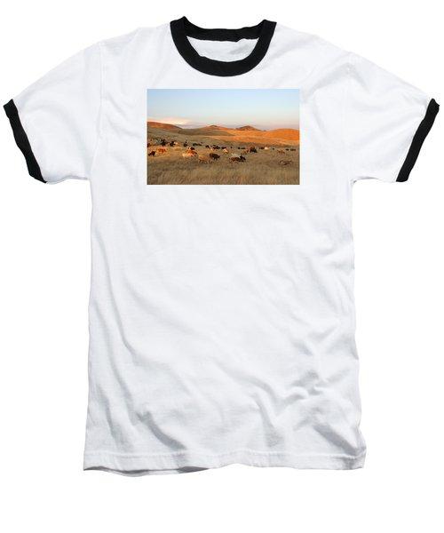 Longhorns Baseball T-Shirt by Diane Bohna
