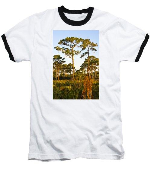 Longleaf Pines, Sunrise, Myakka State Forest Baseball T-Shirt