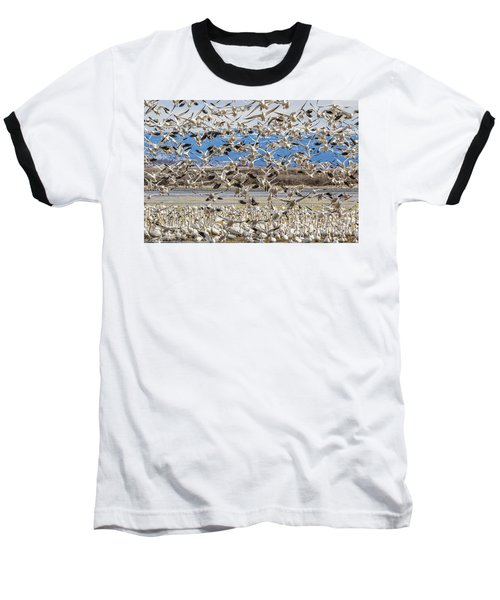 Looking For A Place To Land Baseball T-Shirt