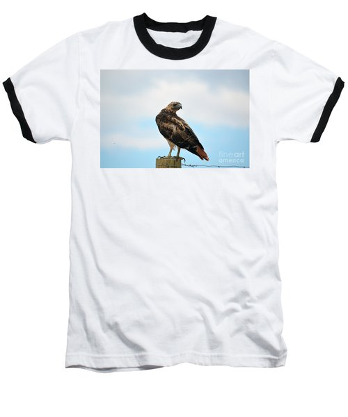 Looking For Lunch Baseball T-Shirt