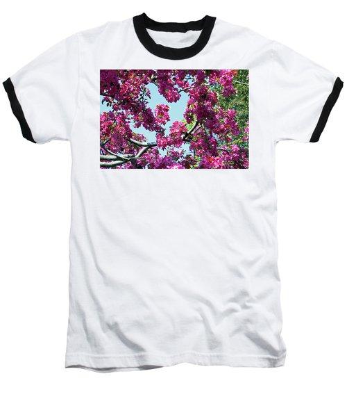 Looking Skyward Baseball T-Shirt