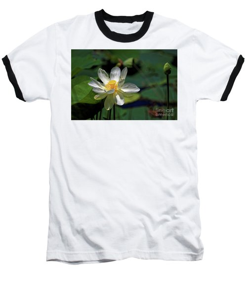 Lotus Blossom Baseball T-Shirt by Paul Mashburn