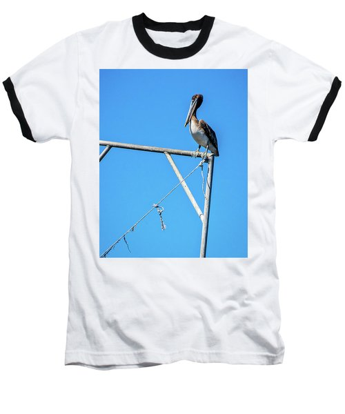Louisiana's State Bird Baseball T-Shirt by Andy Crawford