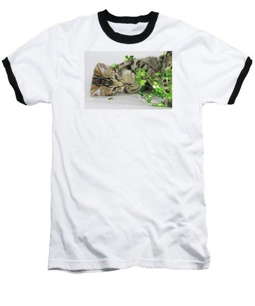 Lucky Kitten Baseball T-Shirt by Shoal Hollingsworth