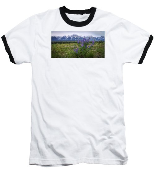Lupine Beauty Baseball T-Shirt