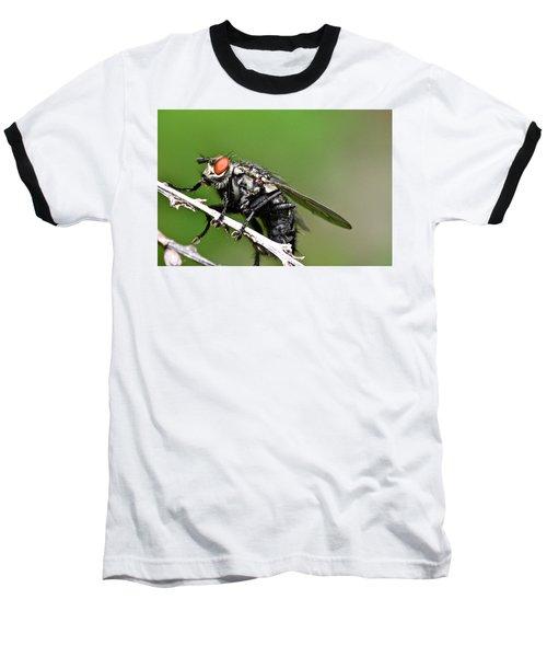 Macro Fly Baseball T-Shirt