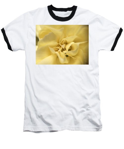 Macro Yellow Rose Baseball T-Shirt