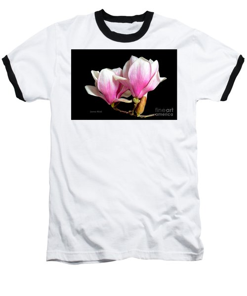 Magnolias In Spring Bloom Baseball T-Shirt by Jeannie Rhode