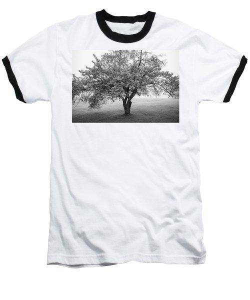 Maine Apple Tree In Fog Baseball T-Shirt