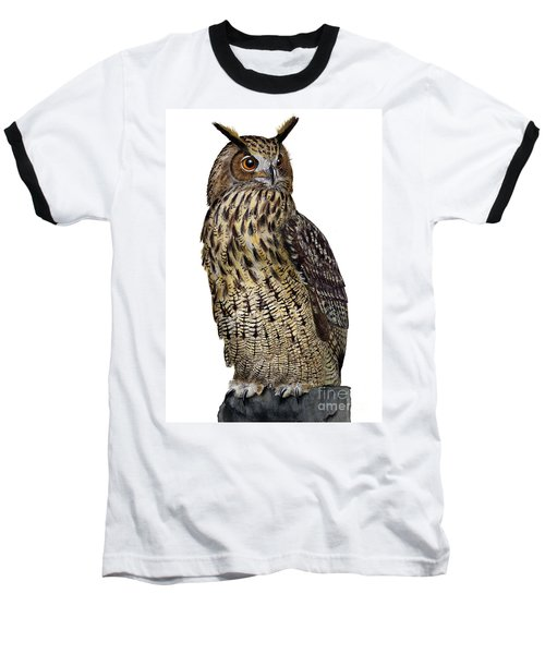 Majestic Eurasian Northern Eagle Owl Bubo Bubo - Hibou Grand-duc - Buho Real - Nationalpark Eifel Baseball T-Shirt