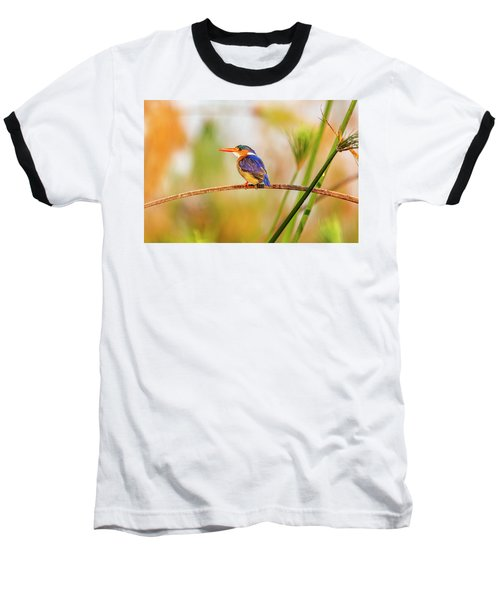 Malachite Kingfisher Hunting Baseball T-Shirt