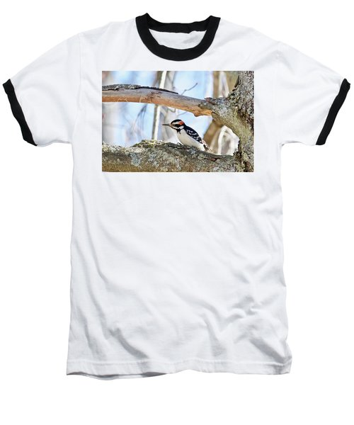 Baseball T-Shirt featuring the photograph Male Downey Woodpecker 1112 by Michael Peychich