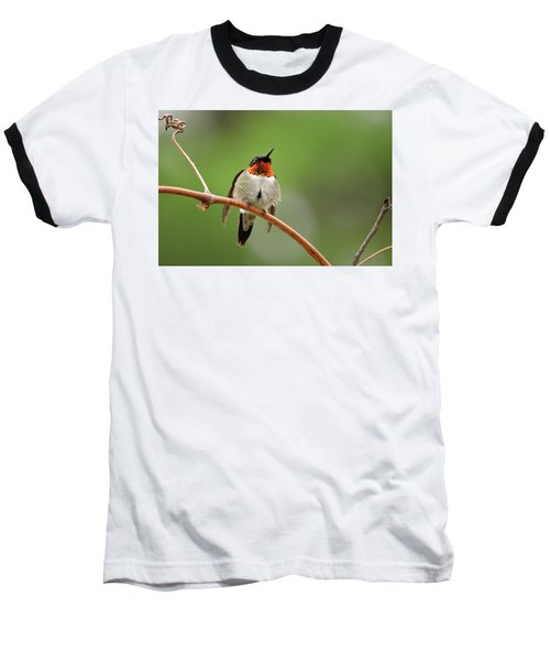 Male Ruby Throated Hummingbird Baseball T-Shirt