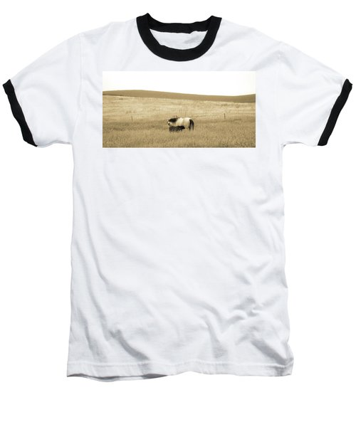 Mare And Foal  Baseball T-Shirt by Dawn Romine