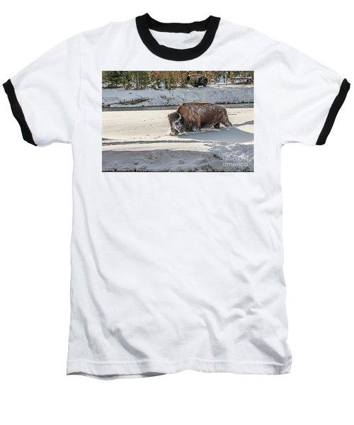 Masked Bison Baseball T-Shirt