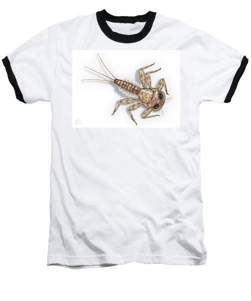 Mayfly Larva Nymph Rithorgena Ecdyonurus Venosus - Moscas De May Baseball T-Shirt