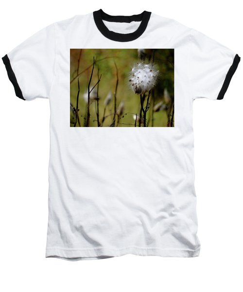 Milkweed In A Field Baseball T-Shirt