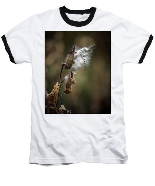 Milkweed Plant Dried And Blowing In The Wind Baseball T-Shirt by John Brink