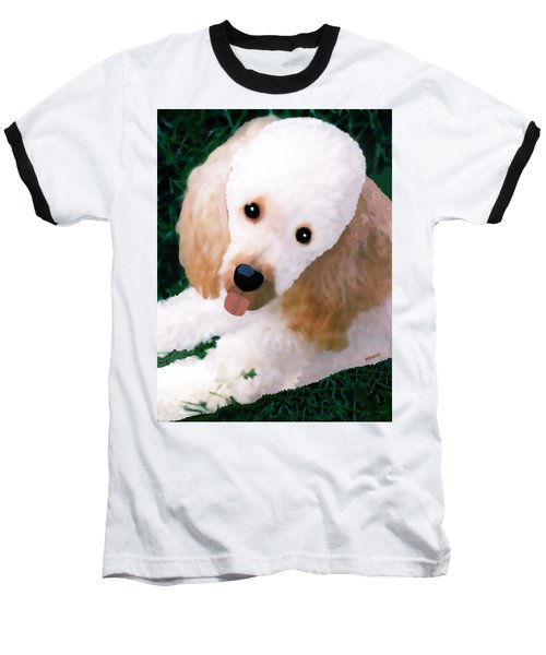 Miniature Poodle Albie Baseball T-Shirt by Marian Cates
