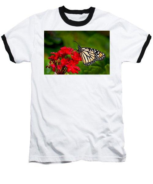 Monarh Butterfly Baseball T-Shirt