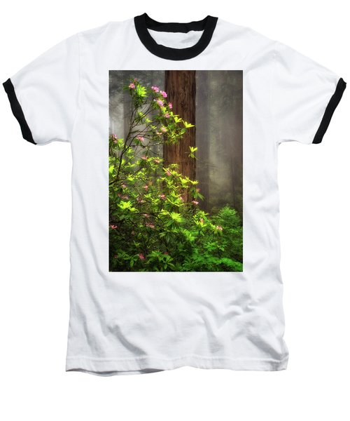 Moody Forest  Baseball T-Shirt