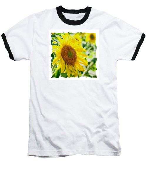 Morning Glory Farm Sun Flower Baseball T-Shirt by Vinnie Oakes