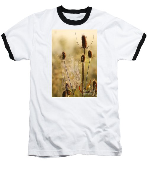 Morning Spider Web Baseball T-Shirt