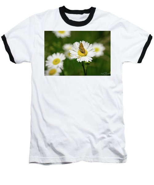 Moth Meets Spider Baseball T-Shirt