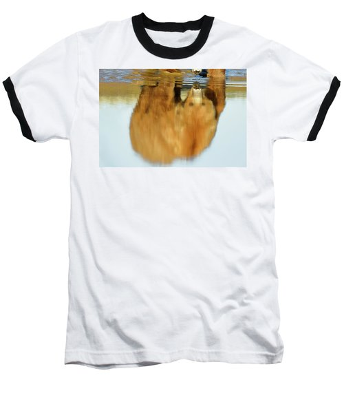 Mother Grizzly Reflection Baseball T-Shirt