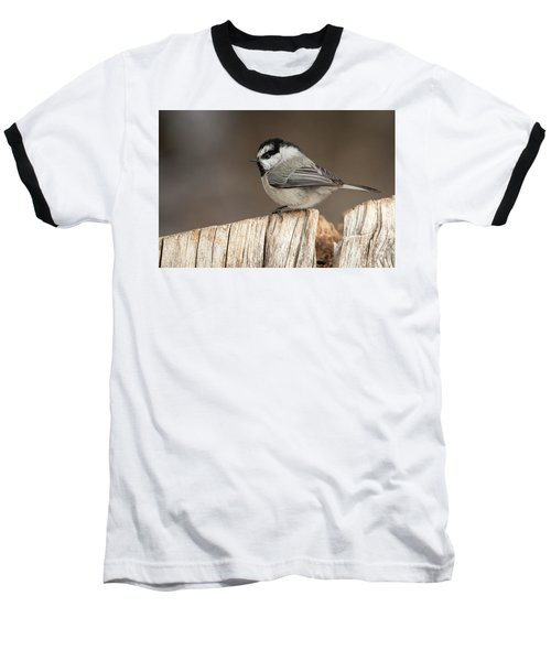 Mountain Chickadee Baseball T-Shirt