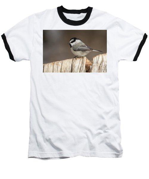 Mountain Chickadee Baseball T-Shirt