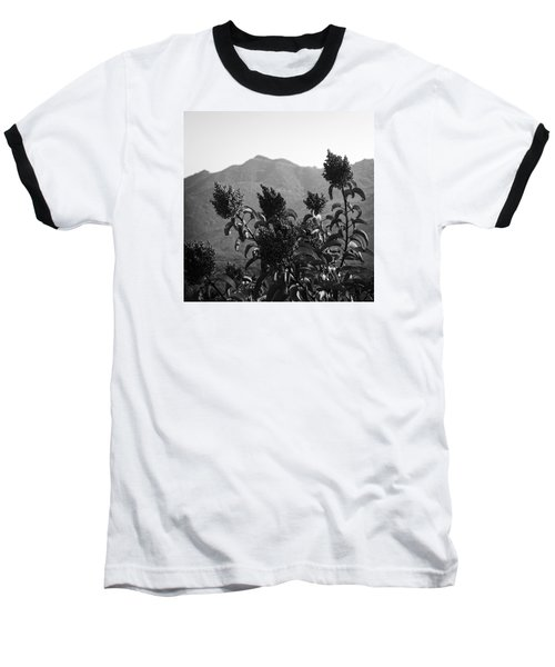 Mountains And Vegetation Baseball T-Shirt