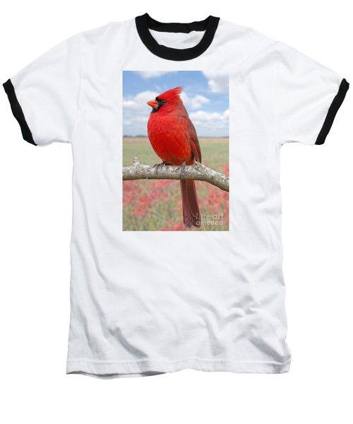 Mr. Cheerful Baseball T-Shirt