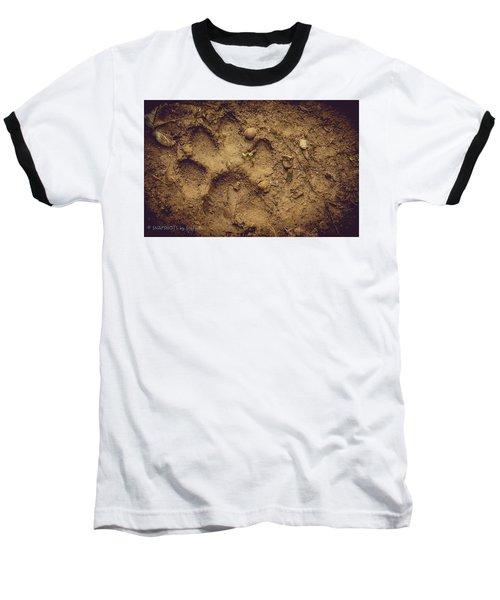 Muddy Pup Baseball T-Shirt by Stefanie Silva