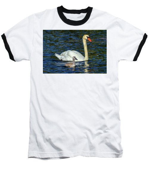 Mute Swan, Cygnus Olor, Mother And Baby Baseball T-Shirt