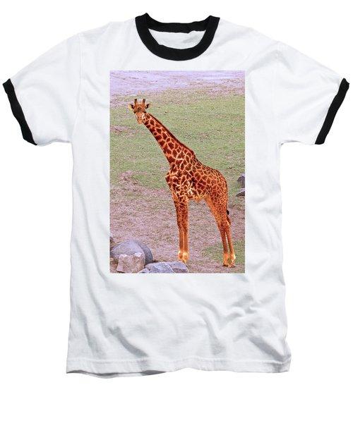My Giraffe Baseball T-Shirt