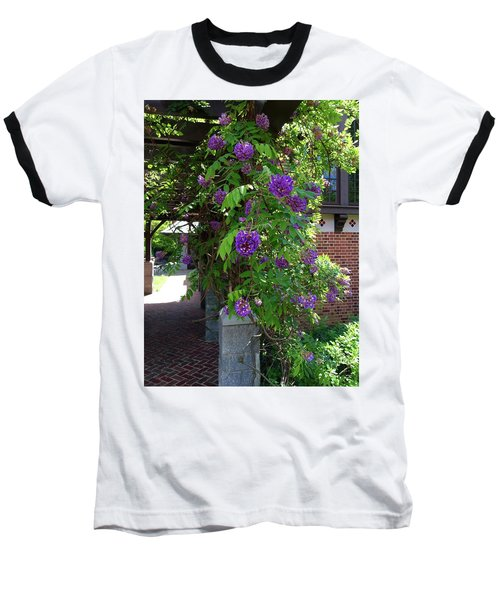 Native Wisteria Vine I Baseball T-Shirt