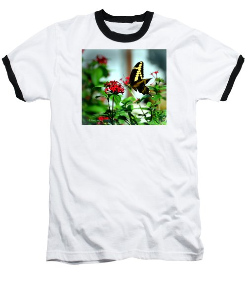 Nature's Beauty Baseball T-Shirt by Edgar Torres