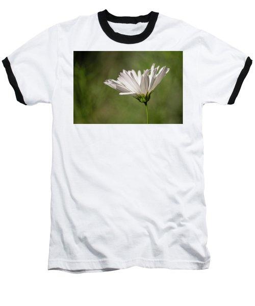 Nature's Paintbrush Baseball T-Shirt