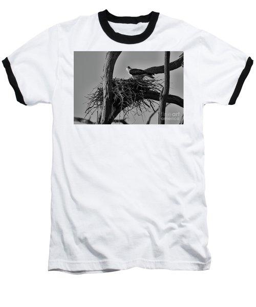 Nesting V2 Baseball T-Shirt by Douglas Barnard