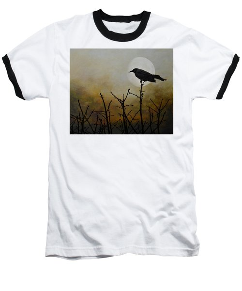 Never Too Late To Fly Baseball T-Shirt by Jan Amiss Photography